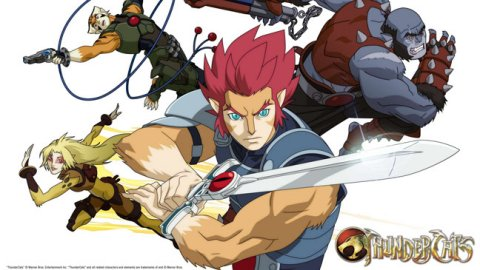 Thundercats  Collection on Thundercats    2011 Gets Dvd Plans Already   The Fandom Post
