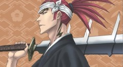 Bleach Collection 16