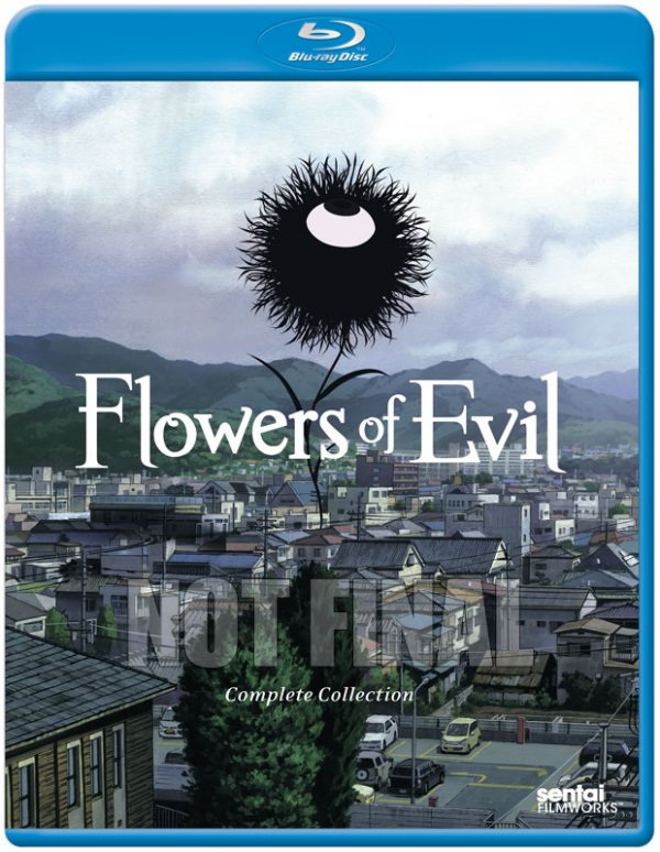 Flowers of Evil Blu-ray Not Final