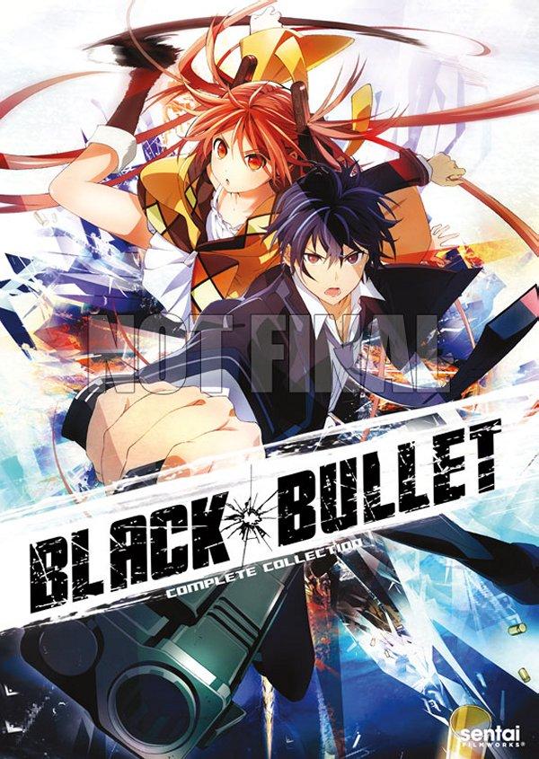 Black Bullet DVD Cover