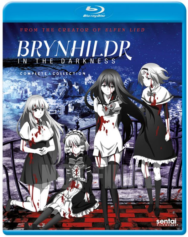 Brynhilder in the Darkness BD Cover