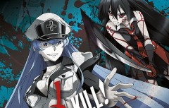 Akame ga KILL Collection 2 BD Header