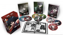 Akame ga KILL Collection 2 CE Packaging (click for larger)