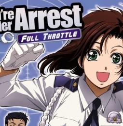 you re under arrest the fandom post