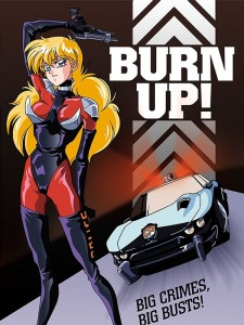 Burn Up Cover