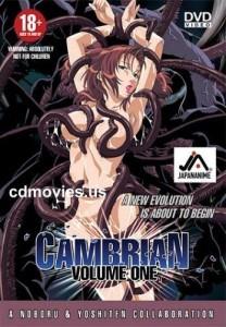 Cambrian Cover